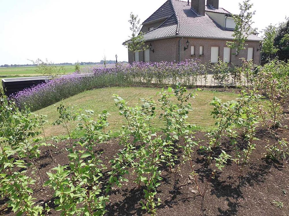 Landelijke-tuin_Heusden_3