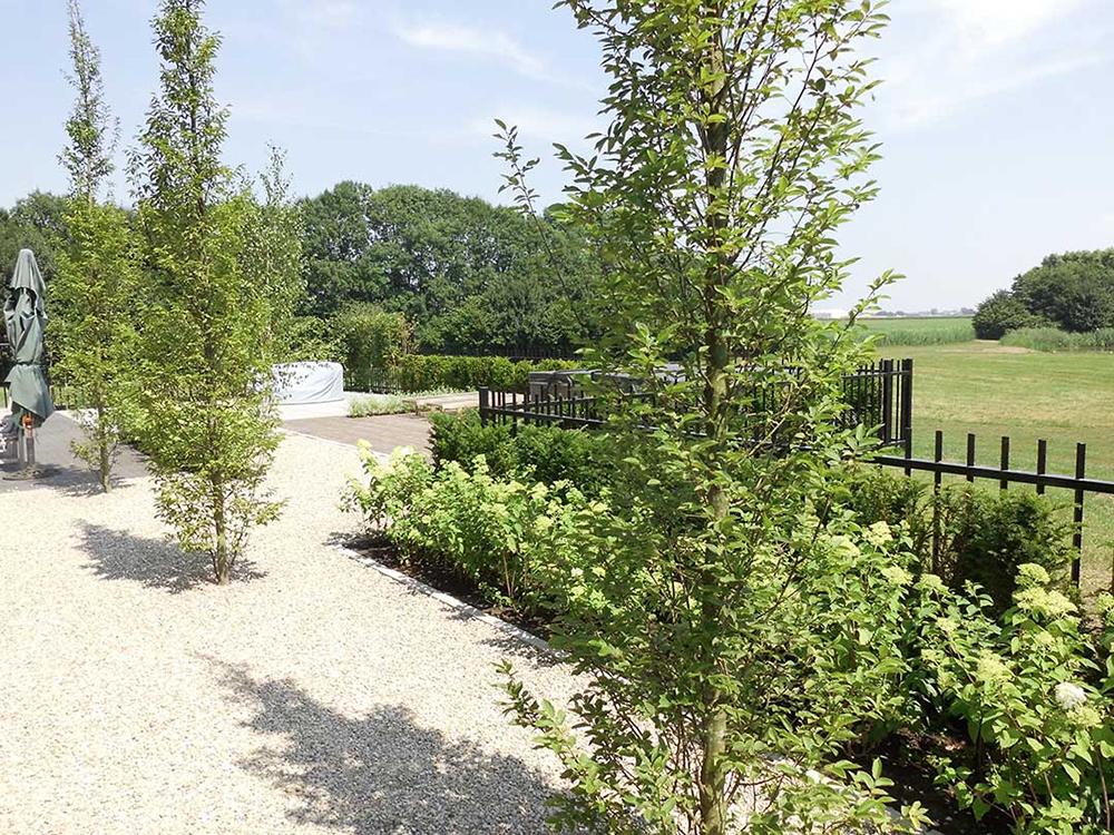 Landelijke-tuin_Heusden_7