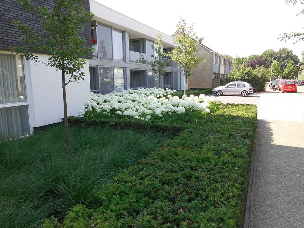 TuinZorginstelling_Oosterhout_3