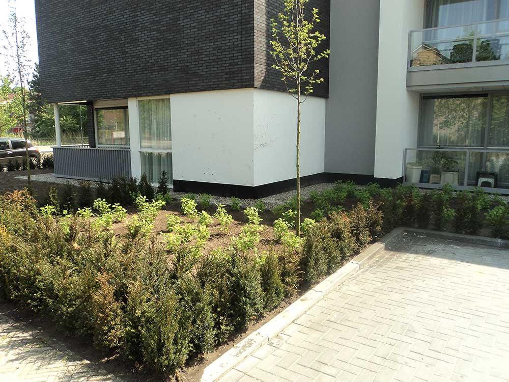 TuinZorginstelling_Oosterhout_4