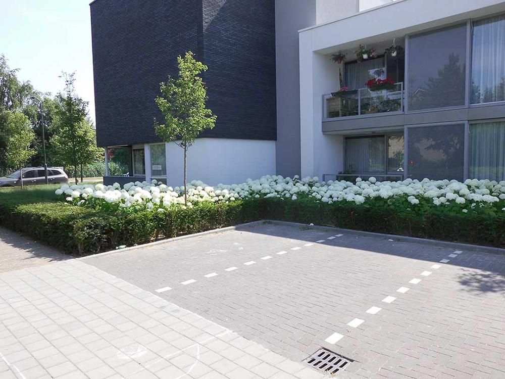 Tuin zorginstelling Oosterhout